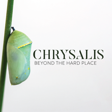 Chrysalis-1080x1080.png