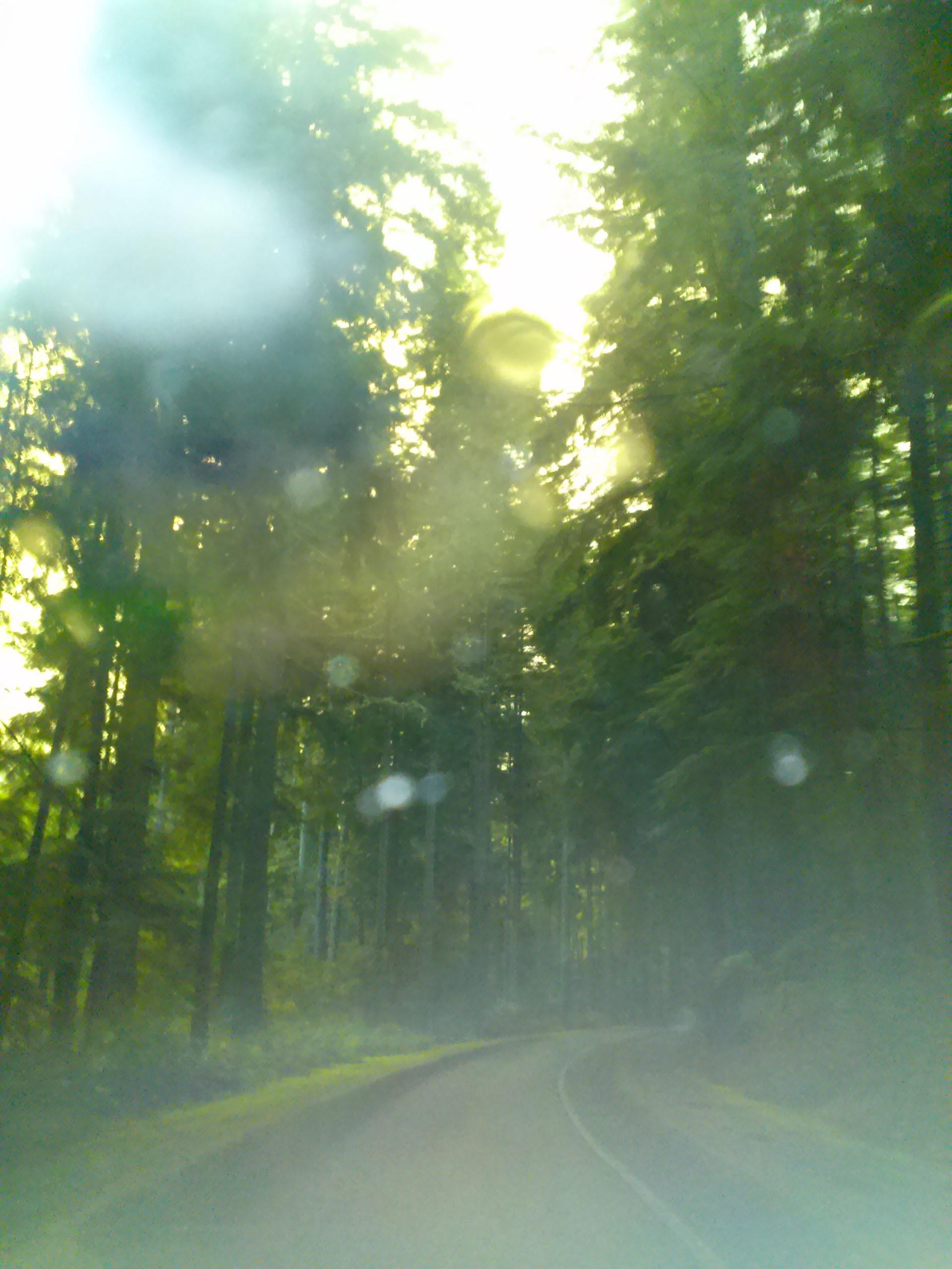 Blurry Road - Final